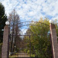 Ворота парка, Тоншаево