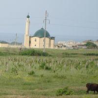 Мечеть в селе Новый Уркарах, Дагестанские Огни
