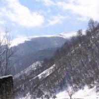 Caucasus, Дылым