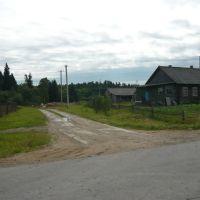 Дорога на лесхоз в Дикой, Ершовка