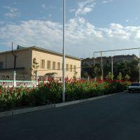 Школа Дзю-До на ул. Мира., Каспийск