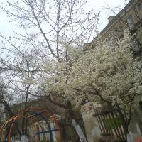 детский сад №5, Каспийск