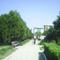 Парк, Кизилюрт