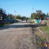 ст.каргалинская ул.вокзальная, Кочубей