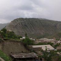 Цудахар, Курах