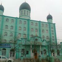 Хасавюрт. Исламский Университет им. Саидбега Даитова, Новолакское