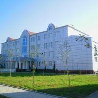 Грозненский государственный колледж экономики и информационных технологий, Терекли-Мектеб