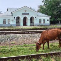 Вокзал станции Слепцовская, 18/08/2013, Терекли-Мектеб