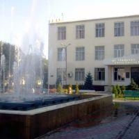 Хасавюрт. Центральная библиотека имени Р. Гамзатова, Хасавюрт