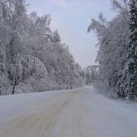 Зимняя дорога, Архиповка