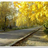 ул.Ульяновская, Вичуга