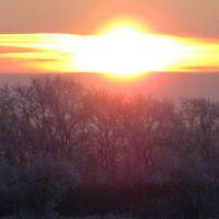 птица-солнце, Гаврилов Посад