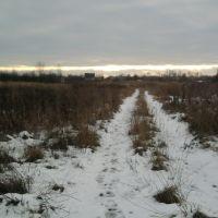 первый снег, Гаврилов Посад