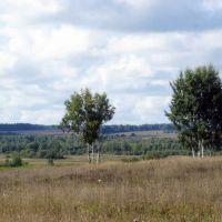Пейзаж в районе д. Жуково, Дуляпино