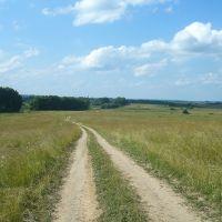 Поле рядом с селом Марьинское, Дуляпино