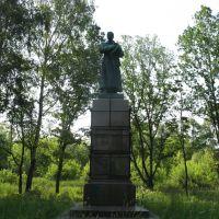 Памятник М. В. Фрунзе, Заволжск