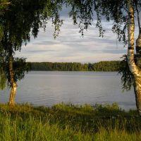 Летний вечер на Волге,близ Заречного., Заречный