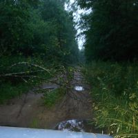 15.07.2009, Иваньковский