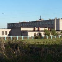 Школа, Ильинское-Хованское