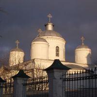 Собор Троицы Живоначальной, Кинешма