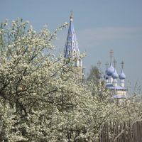 Cherry garden, Палех
