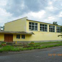 Спортивная школа, Пучеж