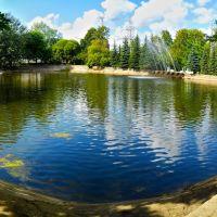 Пруд в летнем саду.11 августа 2012 г., Родники