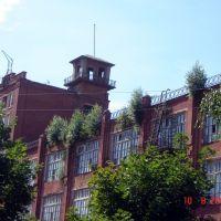 Висячие сады Середы (1), Фурманов