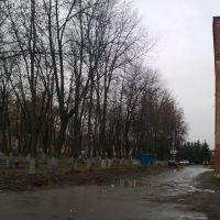 Фурманов. Часть сквера на ул.Социалистическая., Фурманов