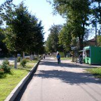 Улица Советская, Южа
