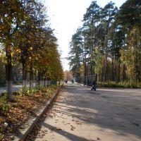 Советская улица, Южа