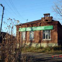 Бурьян перед отделением Сбербанка, Кохма