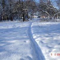Зимний сквер (ул. Заводская), Кохма