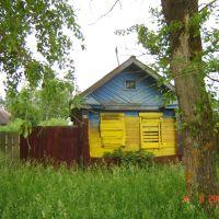 Жовто-блакитний, Кохма
