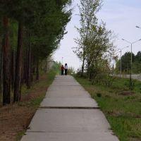 дорожка к 4 мкр, Саянск