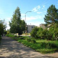 Улица Школьная, Саянск