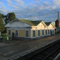 4586-й км Транссиба. Вокзал на станции Алзамай, Алзамай