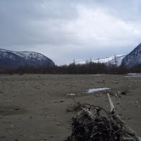 Природа Тофаларии, Алыгжер