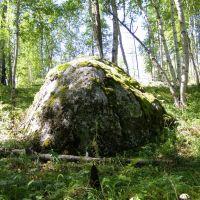Камень, Алыгжер