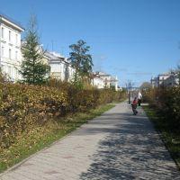 Lenin St. / Аллея от дк Нефтехимиков + осень, Ангарск