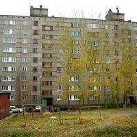 Космонавтов 58, Братск