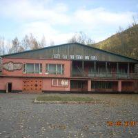 Витимский дом культуры, Витимский