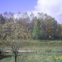 Вид на школу №4 из 7-5, Железногорск-Илимский