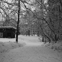 Заснеженная улица, Железногорск-Илимский