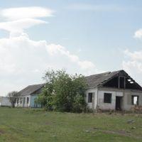 Каменные дома в Сибири не котируются., Забитуй
