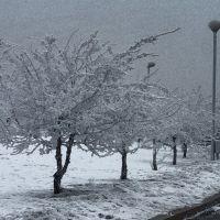 Нелётная погода, Иркутск