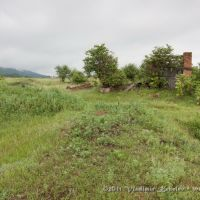 Разрушенная ферма, Квиток
