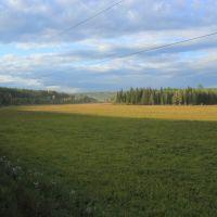 4626-й км Транссиба..., Квиток