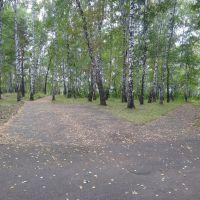 Городской парк, Тайшет