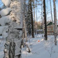 Снежная лесенка, Усть-Илимск